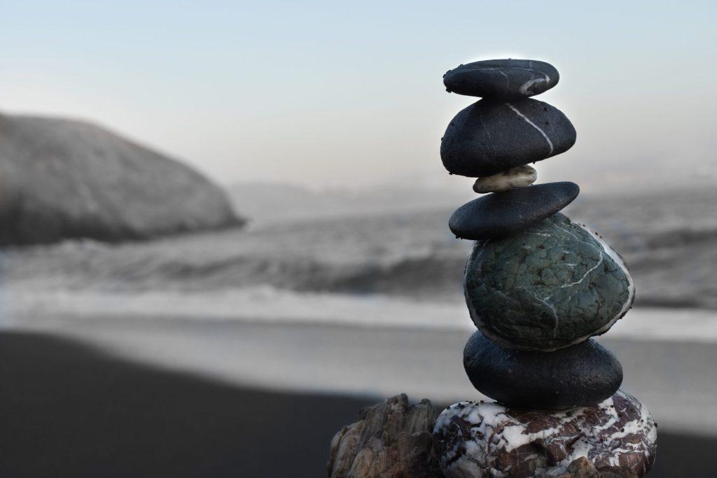 ikigai betekenis