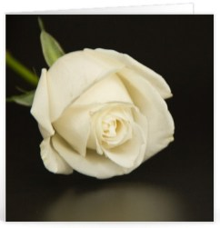 Sterkte wensen begrafenis (4)