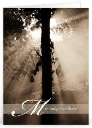 Sterkte wensen begrafenis (6)