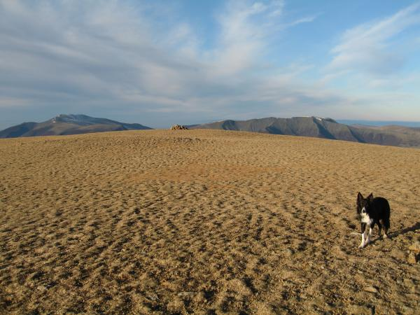 Great Dodd with Skiddaw and Blencathra beyond