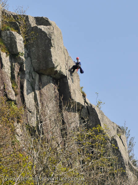 Abseiling in with bags full of secateurs, bow saws and patio knifes to clean out cracks!