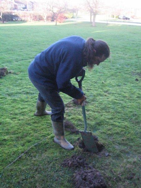 Rich planting tree