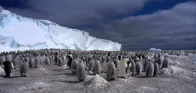 Antarctic Demolition