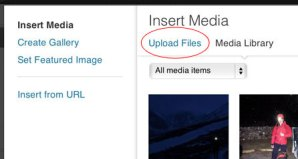 "Step 2 - click the ""Upload Files"" link."