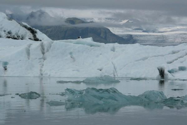 Icebergs at Jökulsárlón