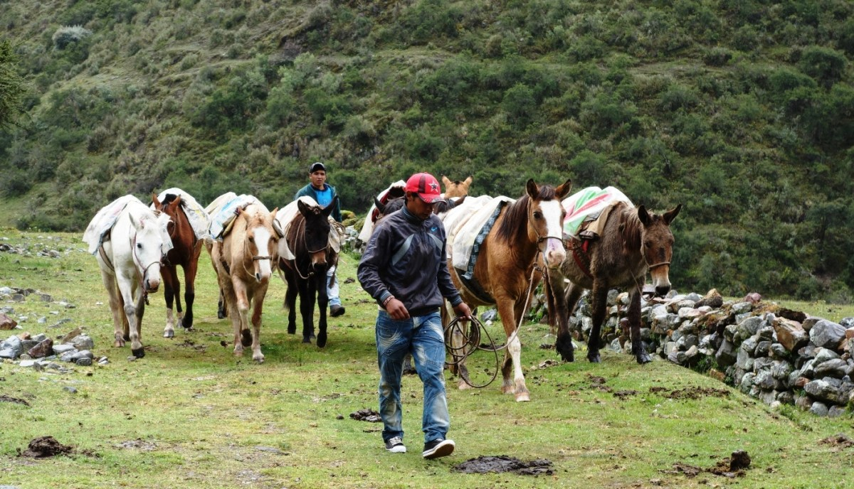Salkantay to Aguas Calientes – Solpayki