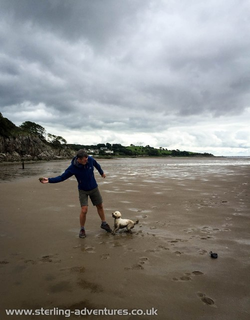 Pete throwing a tennis ball for Zac on Morecambe Bay sands near Silverdale