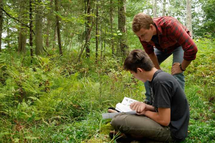 Students studying ecology in the field