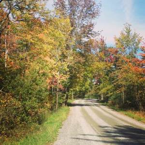 vermont autumn on a dirt back road