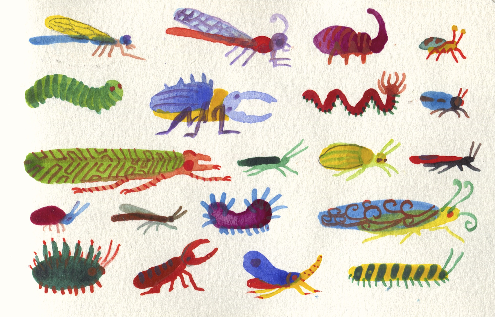 insect and bug artwork