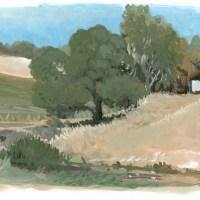 oak tree fort