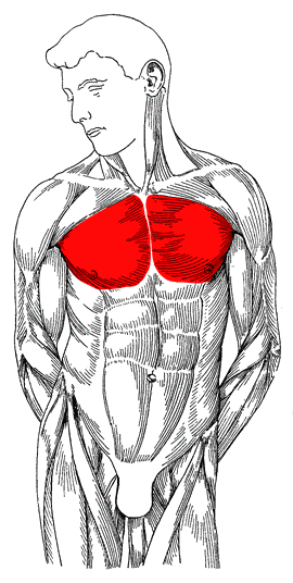 Steroid Injection 101  steroids