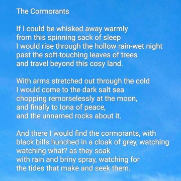 Poetry Up in the Air: The Cormorants