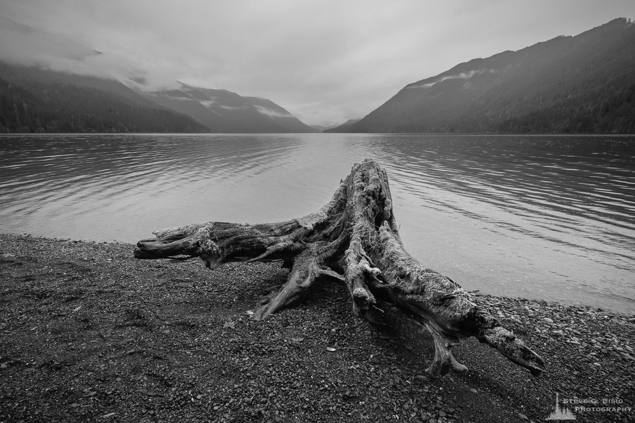 Photography Project: Monochromatic Visions, Olympic National Park, Washington, 2016