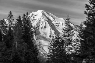 A black and white landscape photograph of Mount Rainier as viewed from Tahoma Creek at Mount Rainier National Park, Washington.