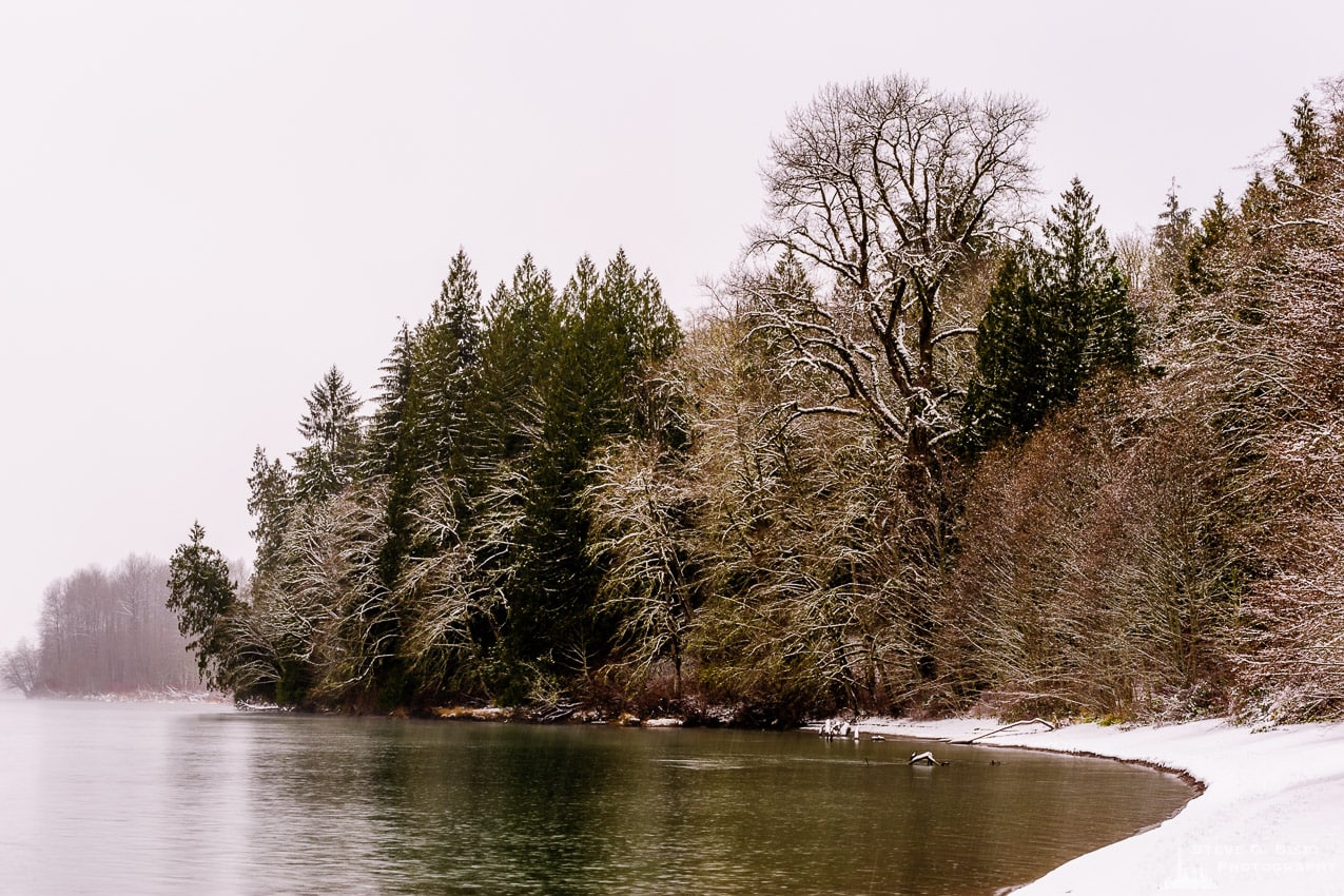 Photography Project: Snowy Late Autumn Afternoon at Rasar State Park, Washington, 2016