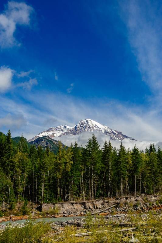 A landscape photograph of Mount Rainier and the Nisqually River as viewed from the Skate Creek Road (Forest Road 52), Lewis County, Washington