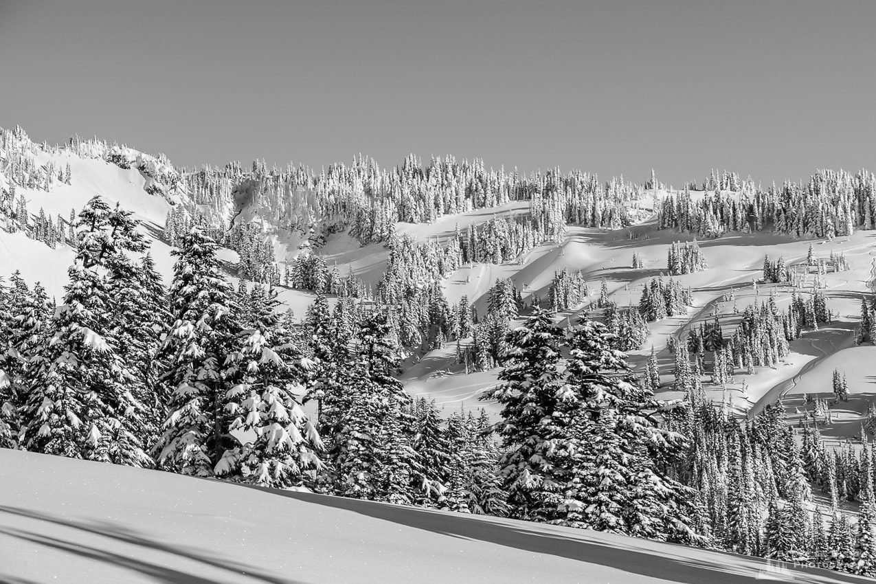 Winter, Upper Paradise Valley, Mount Rainier, Washington, 2017