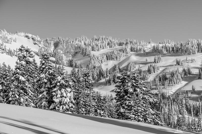 A black and white Pacific Northwest landscape photograph of the snow-covered upper Paradise River valley captured on a sunny winter day in the Paradise area of Mount Rainier National Park, Washington.