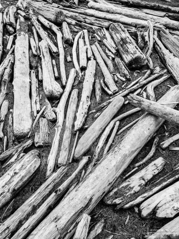 A black and white mobile photograph of driftwood logs arranged in an abstract manner along the shoreline of Maylors Point in Oak Harbor, Washington.