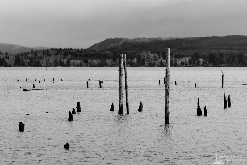 A black and white landscape photograph of Grays Harbor at Hoquiam, Washington.