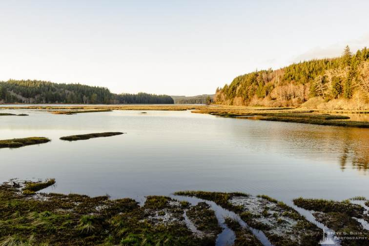 A landscape photograph of the coastline of the Long Island Slough at Willipa Bay in rural Pacific County, Washington.