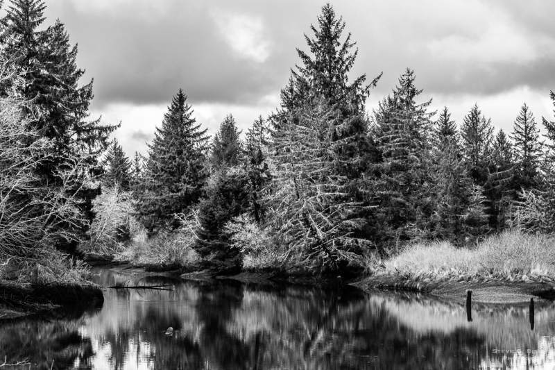 A black and white landscape photograph of Jessie Slough at slack tide in rural Grays Harbor County, Washington.