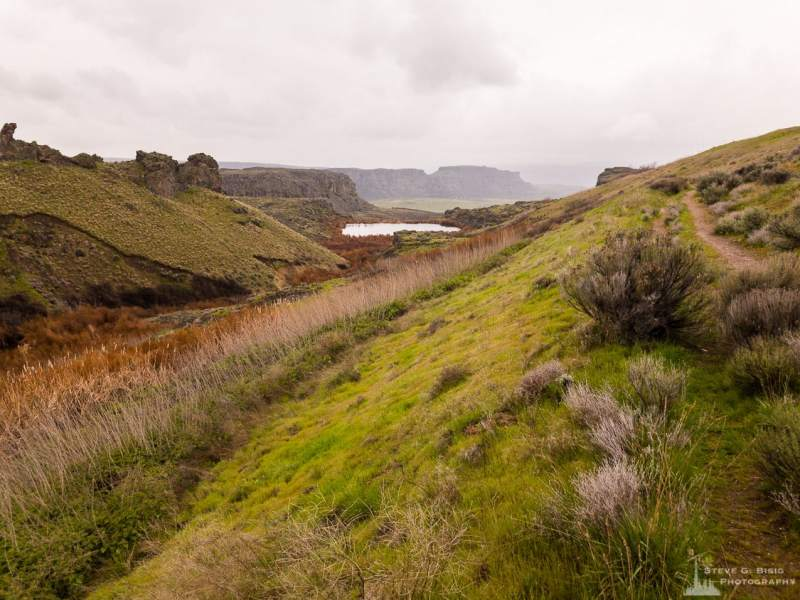 A mobile photograph of the upper Ancient Lakes trail just above Judith Pool before the trail descends the escarpment of Potholes Coulee and the Ancient Lakes Basin near Quincy, Washington.