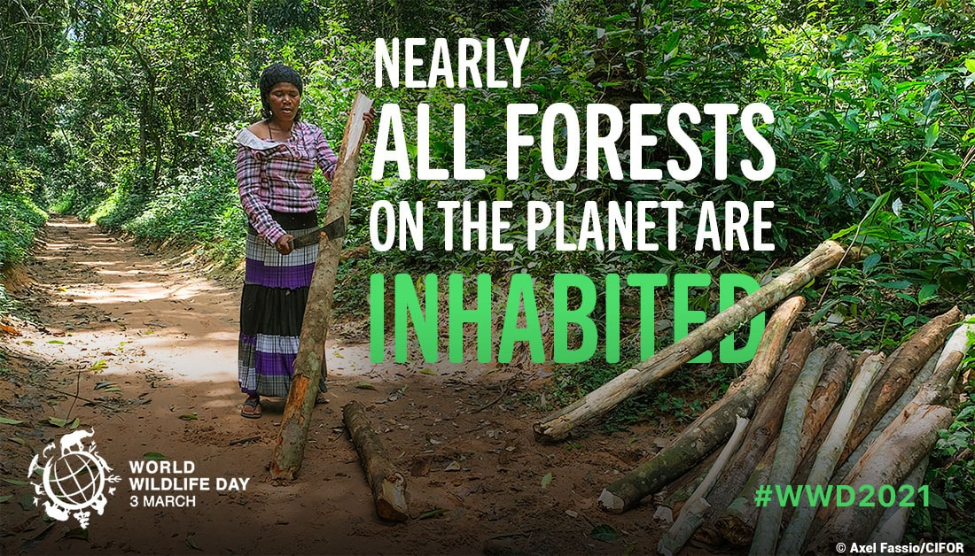 Nearly all forests on the planet are inhabited, with indigenous and other groups having developed unique ways of life and knowledge of how to sustainably use and conserve forest species and ecosystems.