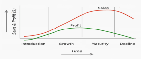 Cost Analysis versus ROI (Return on Investment)