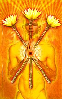 Stevee Postmans Cosmic Tribe Tarot