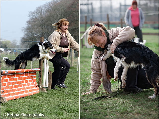 Dog Agility Jumping With Trainer