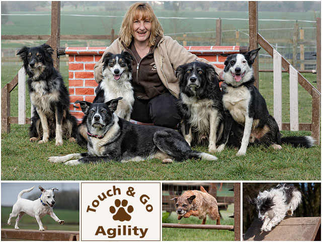 Weekend Passions Dog Agility Editorial Montage