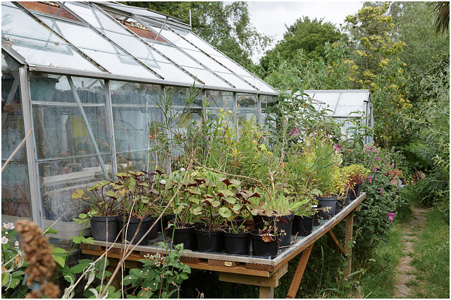Outside View Of Two Glass Greenhouses With Plants Outside