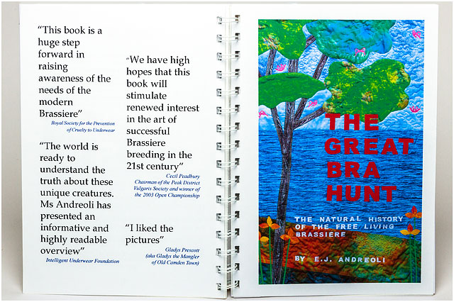 Book Reviews For The Great Bra Hunt Book