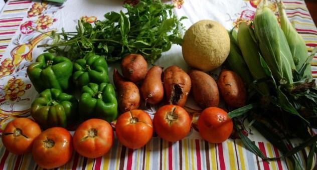 Week 13 Vegetables