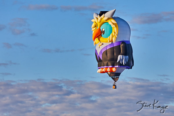 Owlbert Eyenstein, Owner: Gary Moore, Lake Havasu City, AZ, (c) Photo by Steve Kaye taken at the 2017 Albuquerque Balloon Fiesta, in blog post: Strange Birds Take Flight