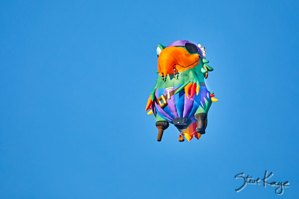 Pegleg Pete, Owner: Dave Reineke, Mahomet, IL, (c) Photo by Steve Kaye taken at the 2017 Albuquerque Balloon Fiesta, in blog post: Strange Birds Take Flight