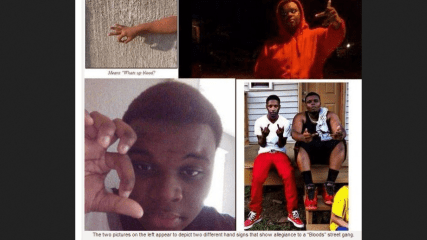 What Really Happened During The Michael Brown Shooting in Ferguson, MO