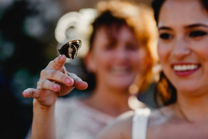 butterfly on brides finger