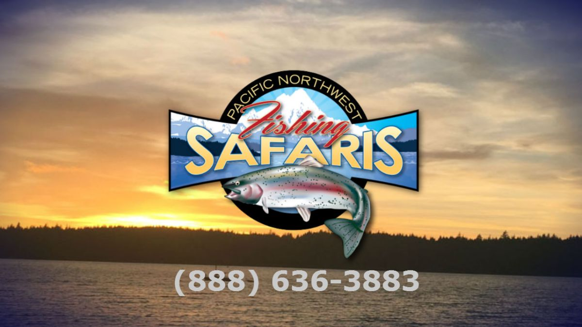 pacific northwest safari website design