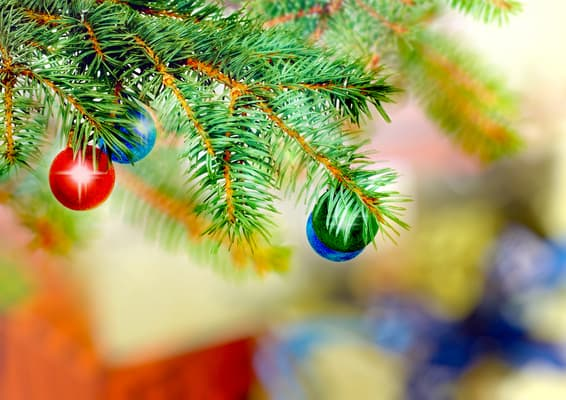 A Christmas Lesson: Humor and the Holiday Spirit
