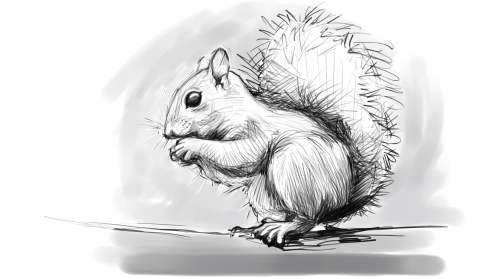squirrel002