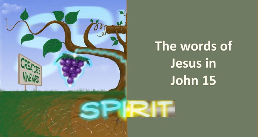 The Vine John 15