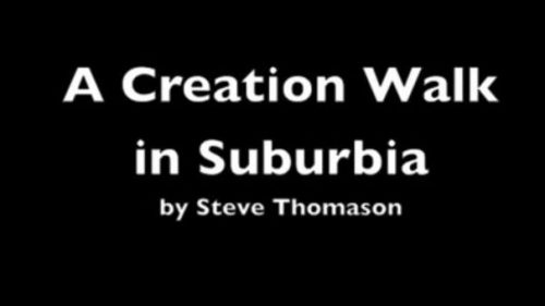 creation walk title slide