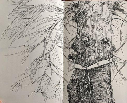 summer2018-sketch-14