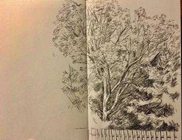 summer2018-sketch-3