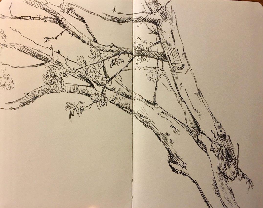 summer2018-sketch-4