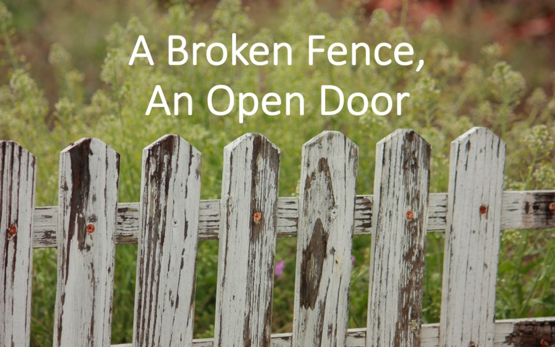 Broken Fence, Open Door | A Sermon for Trinity Sunday 2019