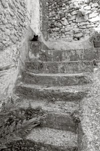 A cat on stairs, Lourmarin, France.